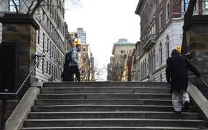 Central Park Steps