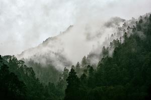 As the fog rolls in. Zempoala, National Park, Morelos, Mexico.