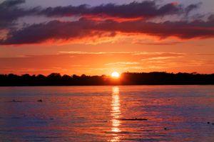 Amazon Sunset - © Adel Korkor