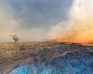 Bush fire, Perdue, Saskatchewan, Canada, 2015.