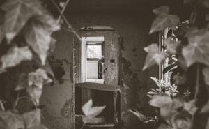 the Doorways