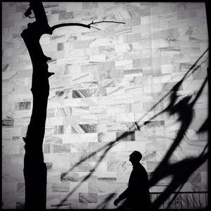 Untitled - Milan