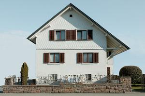 Dornbirn Houses #5  / 2013