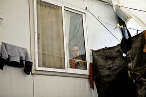 A young child looks outside from his family's container home. © Tom Verbruggen