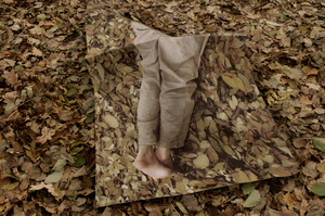 from the series Camouflage (2015)