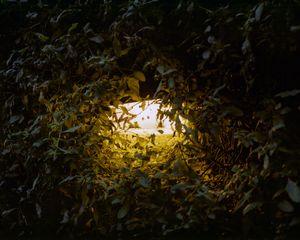 Night Light, Melbourne, Australia