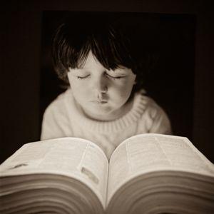 Book of Days  © Lori Vrba