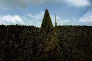 France, Paris  (2009-2013)  (50x75 cm, 1/10)
