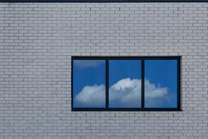 Window XII