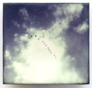 Cloudscape I, 2014