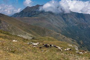 Colle di Columbardo, Piemonte, Italy