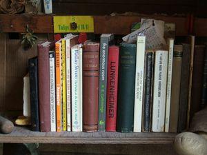 """When things dream"" bookshelf, front right corner"