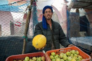 The Melon Seller.  Sid  L'Mokhtar, Morocco