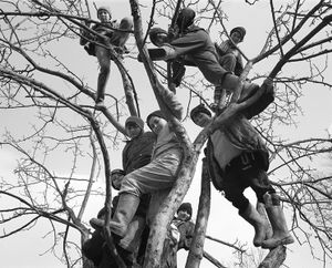 Boys in Trees, Sirbi, 2000. After months indoors, fearing the health dangers of drafts and cold breezes, a balmy day liberates the young boys of the village to run wild. © Kathleen Laraia McLaughlin.
