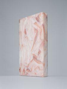 Lapis sarcophagus - Theragra chalcogramma n°5