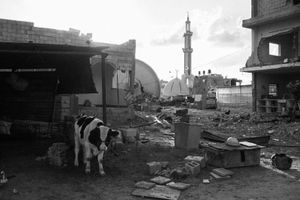 A rubbled farm and demolished mosque are seen in Khuza'a, Khan Younis, southern Gaza on Nov. 3rd 2014.