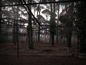 Bikfaiya, 21st September 2011, 18:44