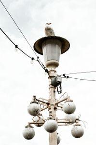 lamppost_11
