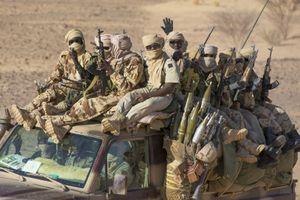 Avec Armee Tchadienne au Mali © Patrick Robert