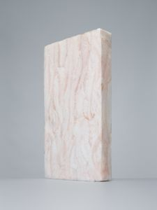 Lapis sarcophagus - Macruronus novaezelandia n°3