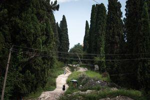 A road to New Athos Monastery. New Athos, Abkhazia. © Olga Ingurazova