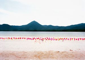 Pinwheels© Takahiro Kaneyama
