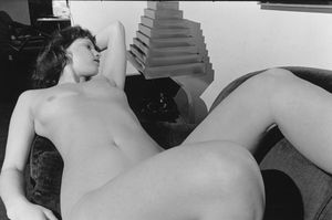 Nude, 1982,  © 2006 Lee Friedlander.The Museum of Modern Art, New York