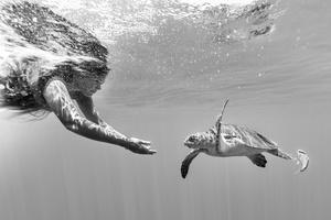 Naomi and turtle