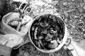 Plage de Bouznica