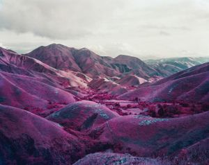 Nowhere To Run, Eastern Congo, 2010 © Richard Mosse. Courtesy of the artist and Jack Shainman Gallery.