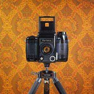 CameraSelfie #5: Perfekta
