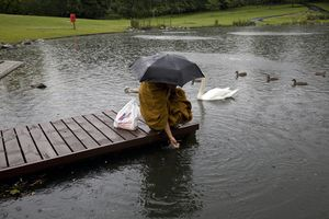 Thai Buddhist Monk feeding the ducks, Handsworth Park  Ram feeds the duck with the leftover bread from the temple on his way back from City College on Soho Road. He has daily English lessons and when he is fluent he envisages travelling internationally from temple to temple.   © Liz Hingley