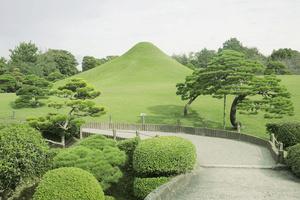 Fuji garden