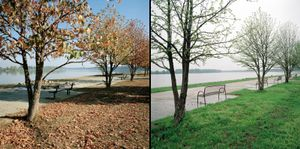 Two images made in the same place six-months apart on the banks of the river Danube. © Colin Dutton
