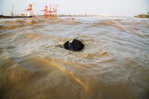 Moe Kyo Kyo diving.