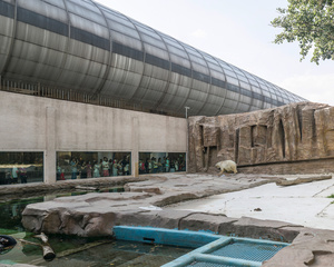 Beijing Zoo, China (2015)