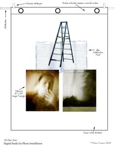 Diagram of individual sheet                    © Diane Fenster
