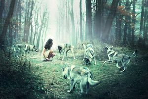 Dances with wolves © Julie De Waroquier