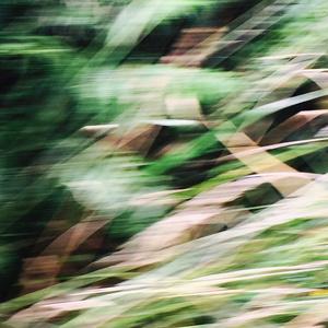 Cornish Roads (hedges), in Flow - B3311-1