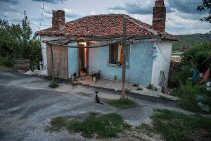 Turkey, Kiyikoy EczanesiA clowder of cats waits for scraps outside a fisherman's cottage.© Petrut Calinescu