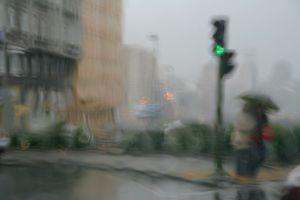 Umbrellas 0482