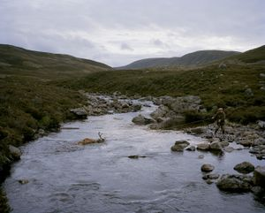 Invercauld Estate Braemar Scotland-David Chancellor