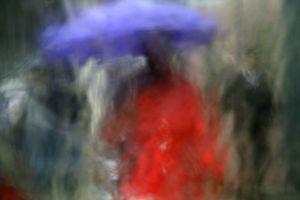 Umbrellas #4212