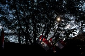 Flags of Singapore at the last village of Singapore,National Independence Day of Singapore© Amrita Chandradas