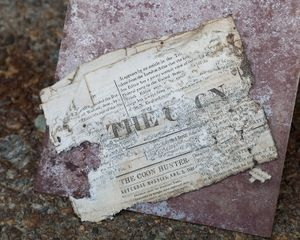 Untitled - Newspaper