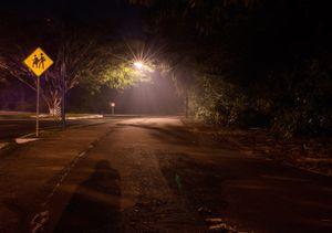 Paseo de los Viveros. Ixtapa.