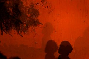 Deborah's profile draws a shadow for a wall. © Meeri Koutaniemi