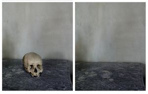 "Skull, from ""Cezanne's Objects,"" 2013 © Joel Meyerowitz. From the book ""Where I Find Myself."" Published by Laurence King."