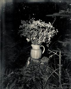 Bouquet                                       © Paul Thulin