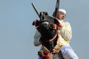A rider draws his charging horse to a stop in an instant before shooting his musket into the air. Oued Merzeg, Morocco